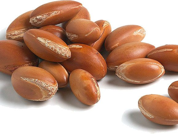 Argan Oil – Everything you need to know